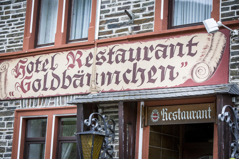 ellenzer-goldbaumchen thumbnail