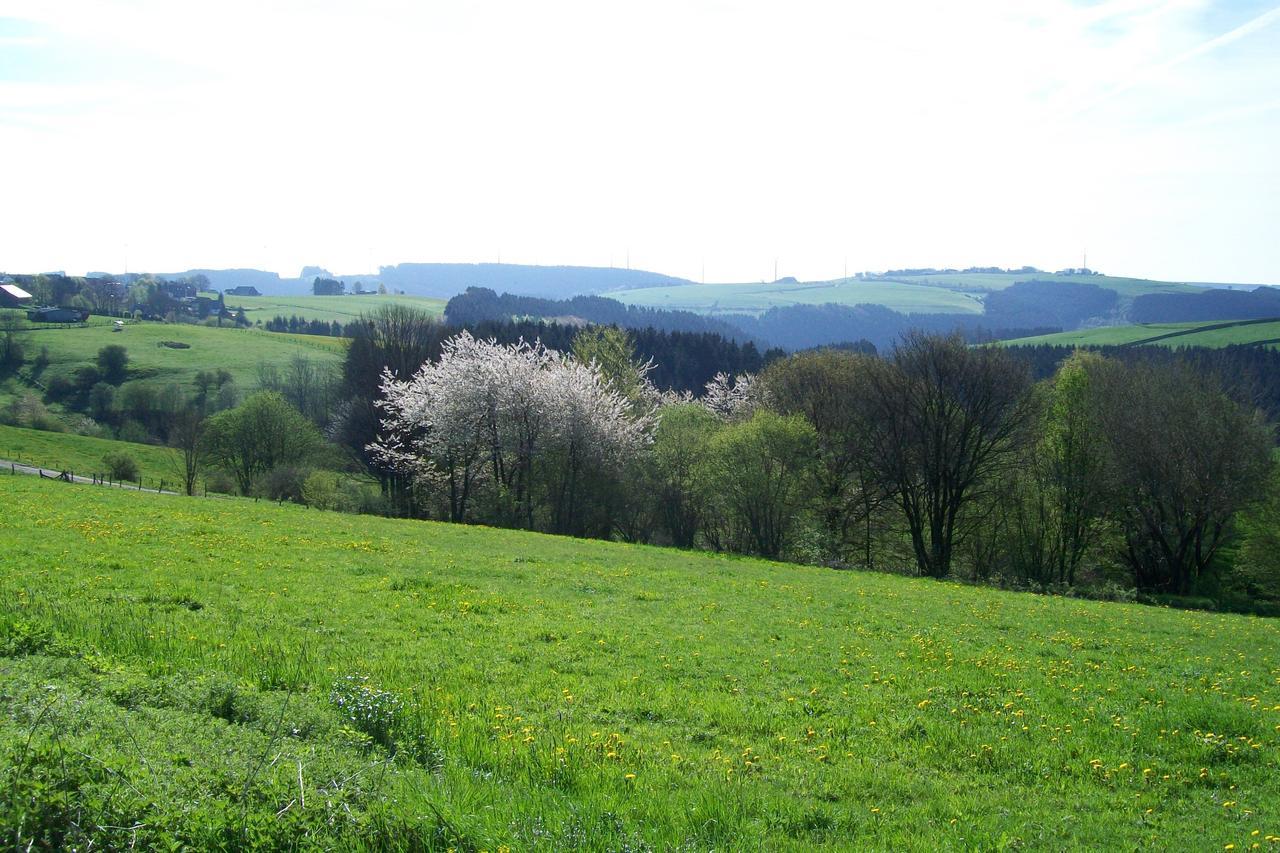 landhaus-eifelsicht thumbnail